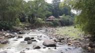Tebar Ikan Di Sungai Ciliwung