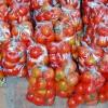 Gigi Putih Dengan Jus Tomat