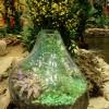 Terarium Taman Mini Dalam Kaca