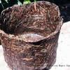 Pot Organik Ramah Lingkungan Dari Jerami Padi
