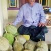 Durian Si Radio Dari Pandeglang