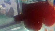 Microbubble Generator Dari Tim Mino UGM
