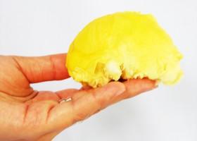 Durian Tanpa Bau Dan Biji