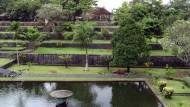 Pohon Bangsawan Taman Nirmada