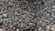 Pasir Malang Unggul