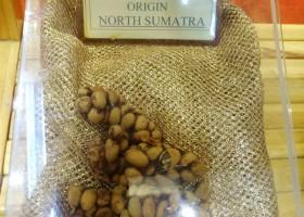 Kopi Nusantara: Kopi Luwak Hebat