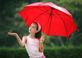 5 Herbal Pelindung Di Musim Hujan