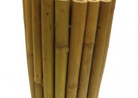 Bambu Dan Lele