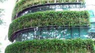 Singapura Surga Taman Vertikal
