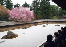 Misteri Taman Ryoanji