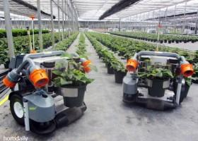 Robot Pintar Di Kebun Bibit