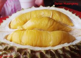 Durian Unggul Negeri Jiran