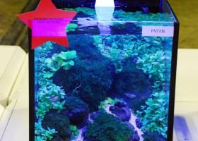 Bebeja Aquarama 2015 (4): Dunia Akuarium Nano