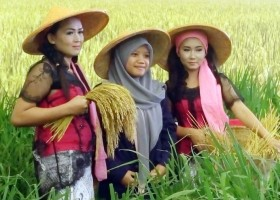 Bebeja 10th Agrinex Expo 2016 (1): Agribisnis Indonesia