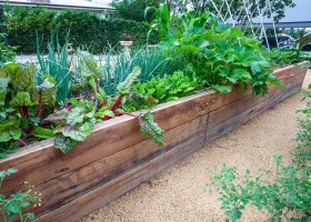 Kota Urban Farming Amerika Serikat