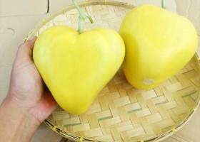 Katakan Cinta Dengan Melon Cinta