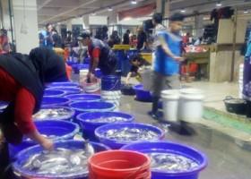 Tiga Jam Di Pasar Ikan Muara Baru