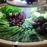 Sayuran Bebas Residu Pestisida