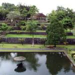 Pohon Bangsawan di Taman Nirmada