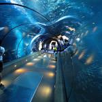 Akuarium Terpanjang di Thailand