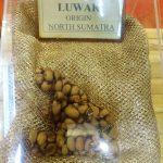 Kopi Nusantara: Hebatnya Kopi Luwak