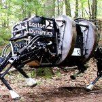 Anjing Robot Medan Perang
