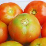 Jus Tomat Pulihkan Tenaga