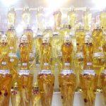 Herbal Jepang Kampo