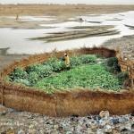 Berkebun Di Bantaran Sungai