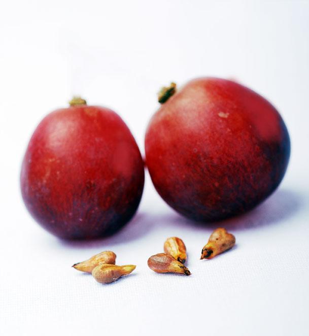 anggur-1