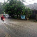 Lubang Biopori Jakarta Bebas Banjir