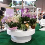 Horti Asia Fair 2014 Bangkok, Thailand (3-Selesai)