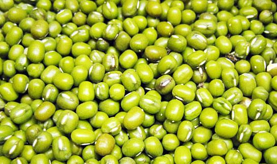 kacang-hijau