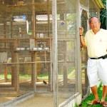 Vichai Pinyawat, The Legend of Birds in Thailand