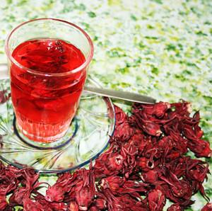 bunga-rosela