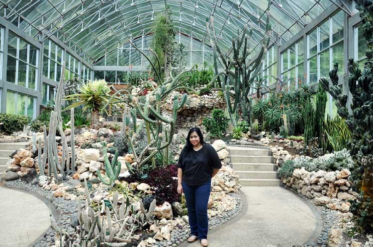 taman-kaktus