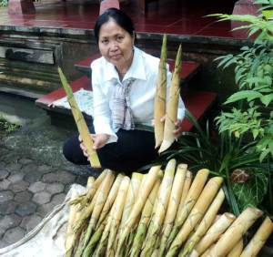 bambu-tabah1