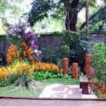 Taman Anggrek Skala Mini