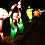 Lampion Di Taman Pelangi Yogyakarta