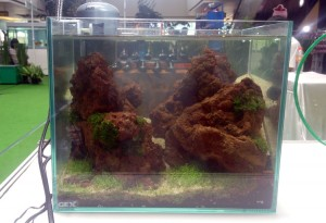aquascape-live-setup8