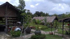 kampung-jelok1
