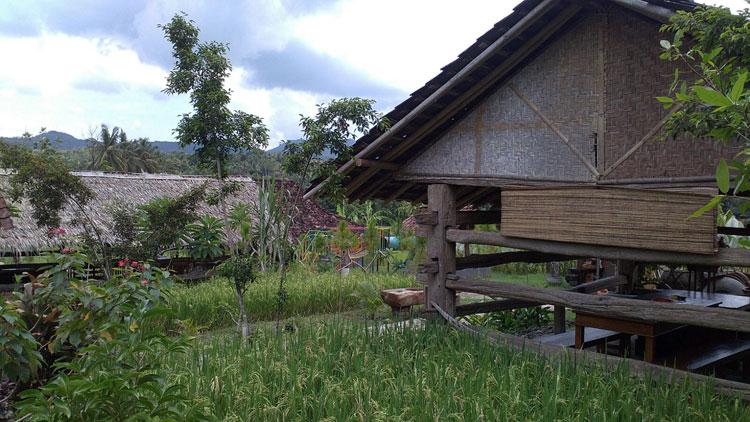 kampung-jelok2