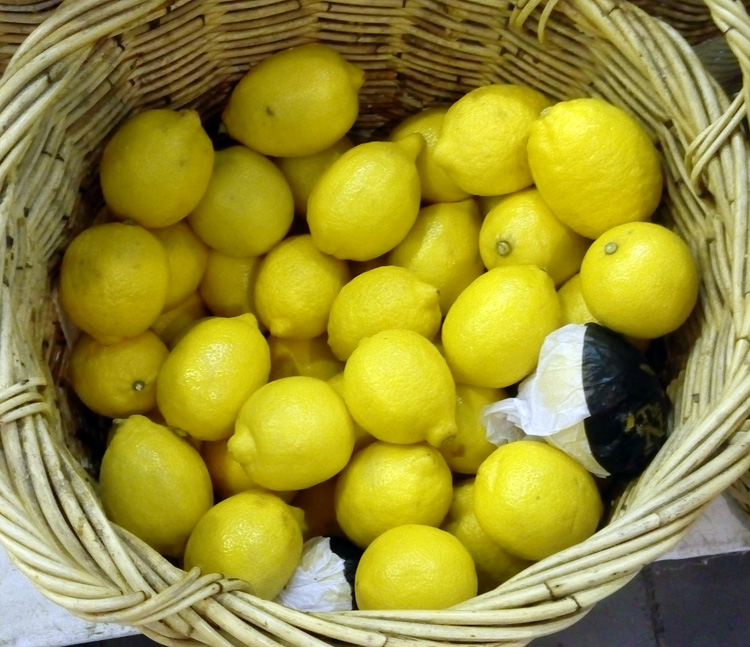 jeruk-lemon