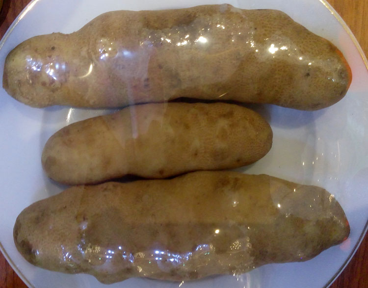 kentang-jala-ipam2