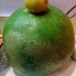 Jeruk Pamelo Besar Dari Muaro Jambi