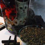 Arang Aktif Pada Pakan Kucing