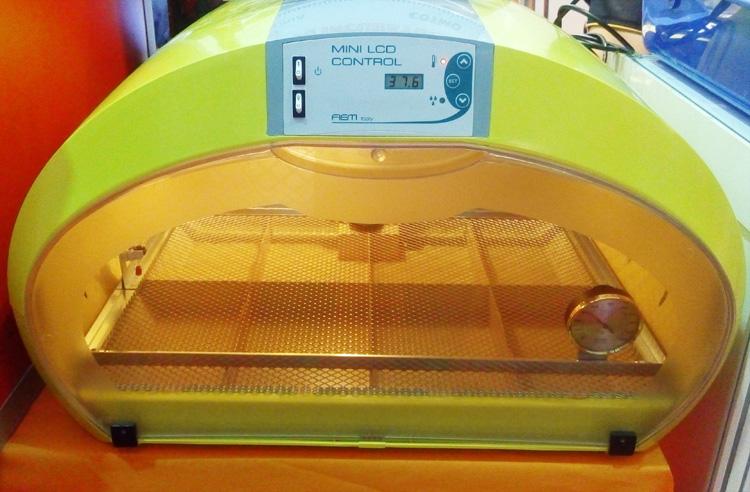 inkubator-telur-portable