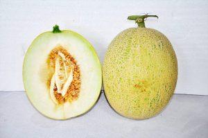 kontes-melon-2016-1