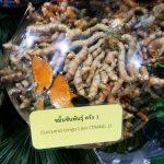 Bebeja Horti Asia 2017 (3): Berkebun Kunyit Di Thailand