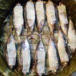 Tergoda Ikan Cue Tongkol